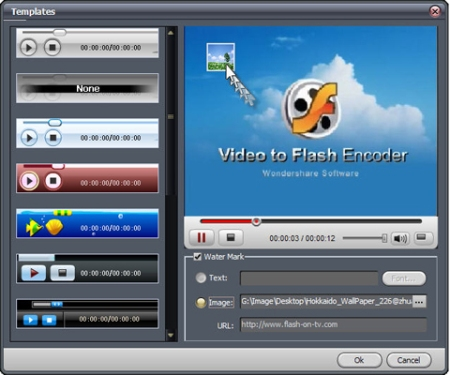 video-to-flash-encoder-template-watermark4