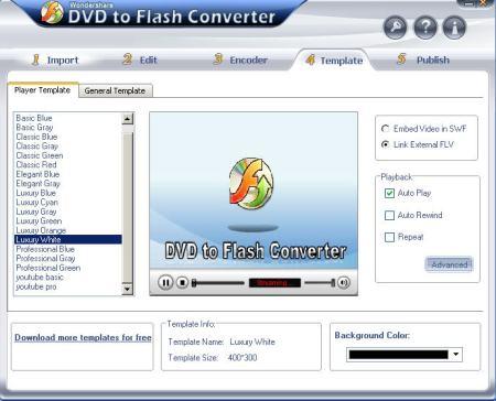 convert-dvd-to-flv31